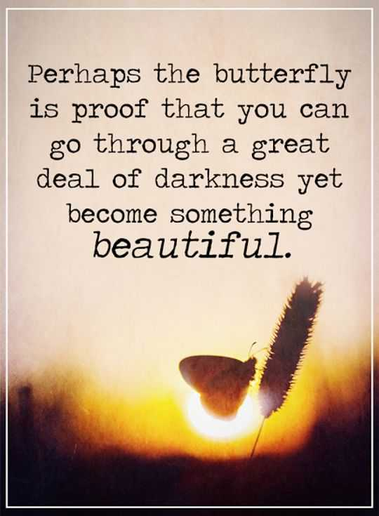 Inspirational Quotes: Life Sayings Become Something Beautiful, Proof