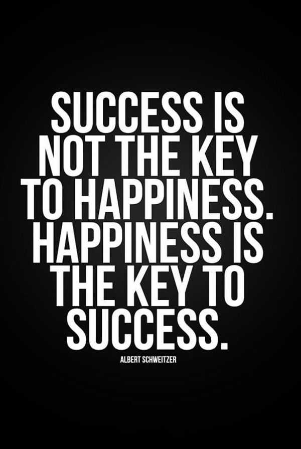 successful quotes about life happiness