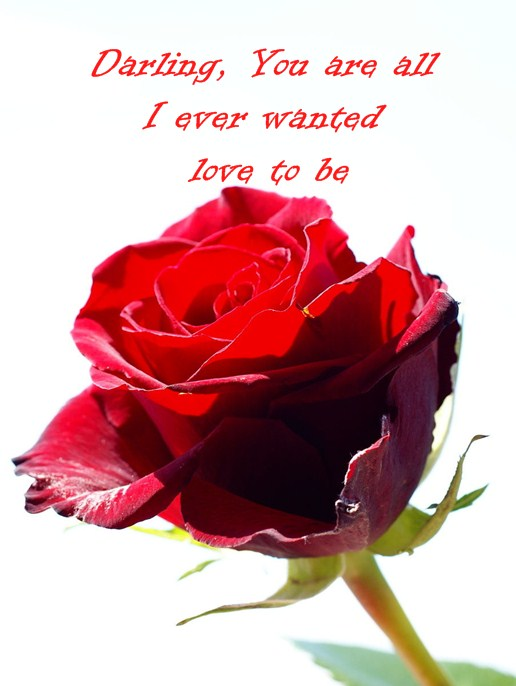 Love Quotes of the day Love Sayings Darling YOU Forever Be My Always