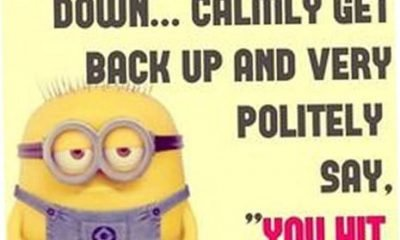 38 Funny Quotes Minions And Minions Quotes Images 7