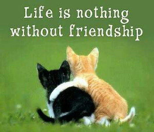 Best Friends Quotes Life is Nothing Without Friendship