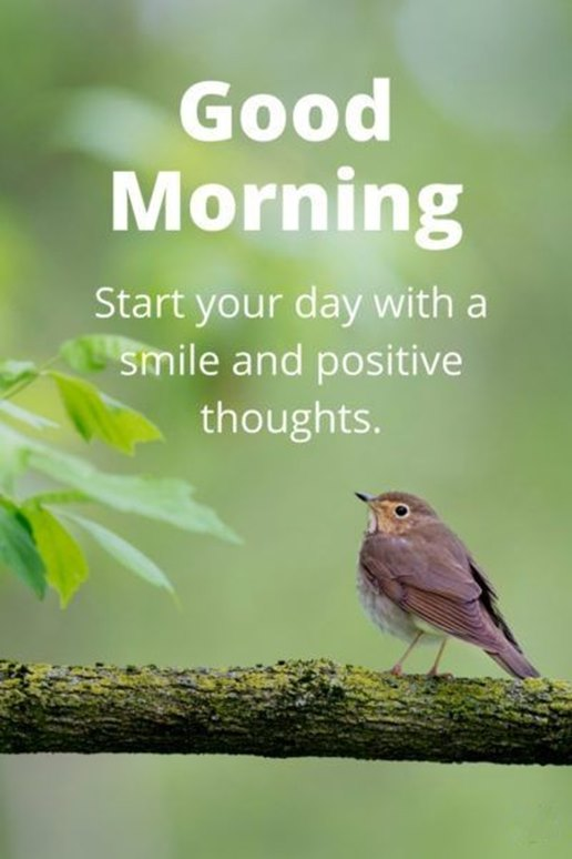 Good Morning Quotes Good Morning Start Your Day Smile And Positive Thoughts Dreams Quote