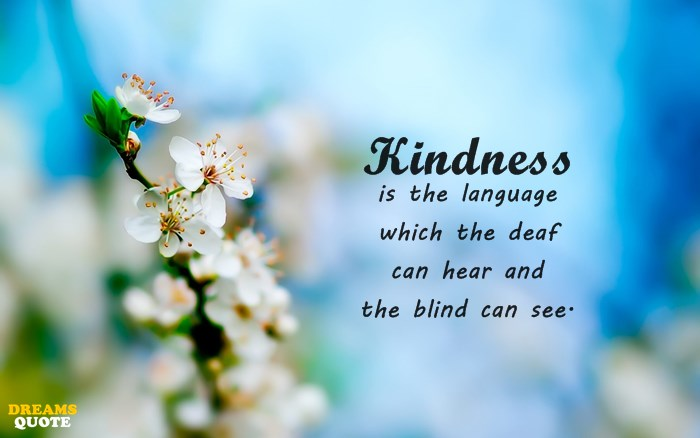 23 Kindness Quotes 2