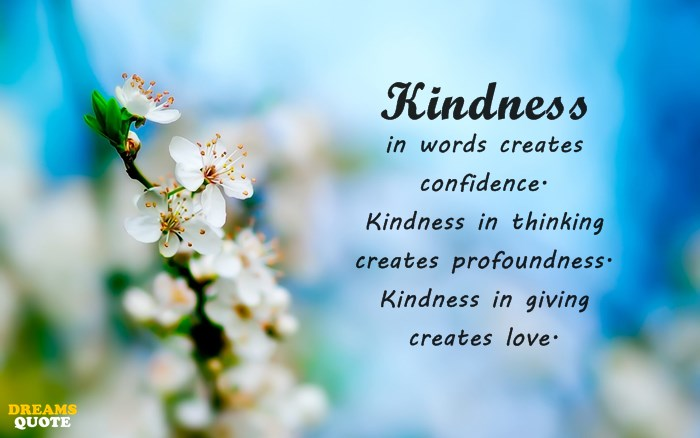 23 Kindness Quotes 3