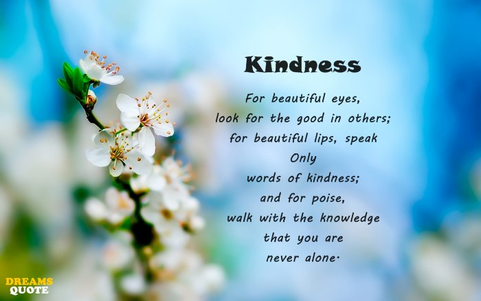 23 Kindness Quotes 6