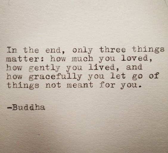 105 Buddha Quotes Youre Going To Love 4
