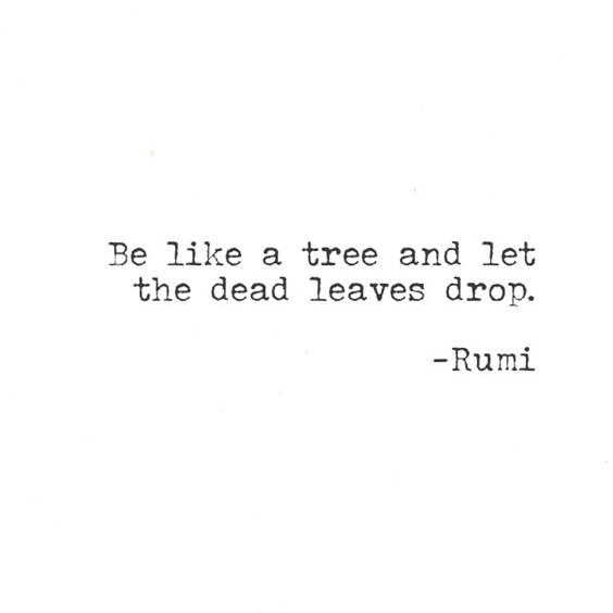 112 Inspirational Rumi Quotes That Will Inspire You 18