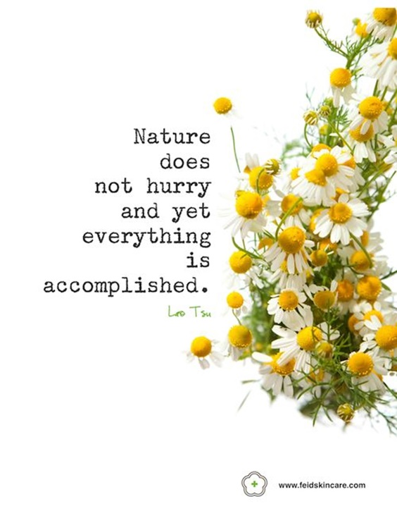 93 Spring Quotes Youre Going To Love Immediately 13