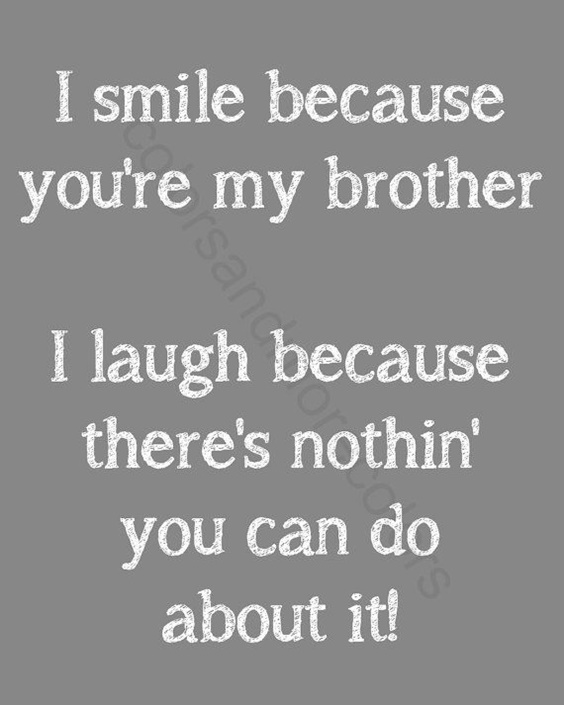 The 100 Greatest Brother Quotes And Sibling Sayings 0ca76987ed8dc4bc0bf4c073f312cc4e 1