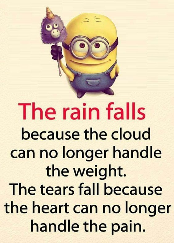86 Funny Quotes Minions And Minions Quotes Images 14