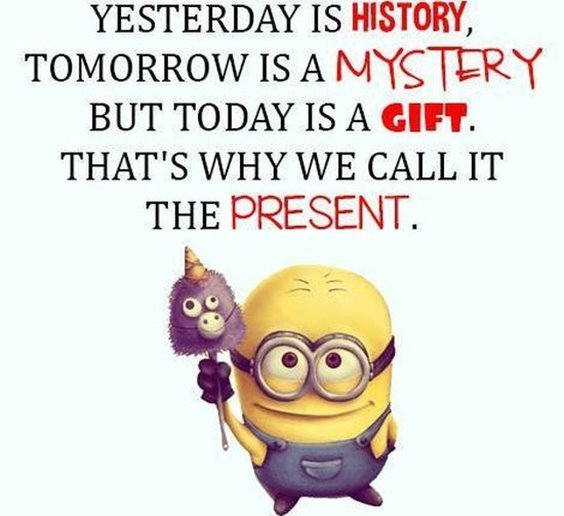 86 Funny Quotes Minions And Minions Quotes Images 18