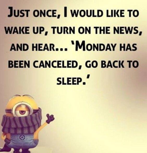 Top 87 Funny Minions Quotes And Funny Pictures 7