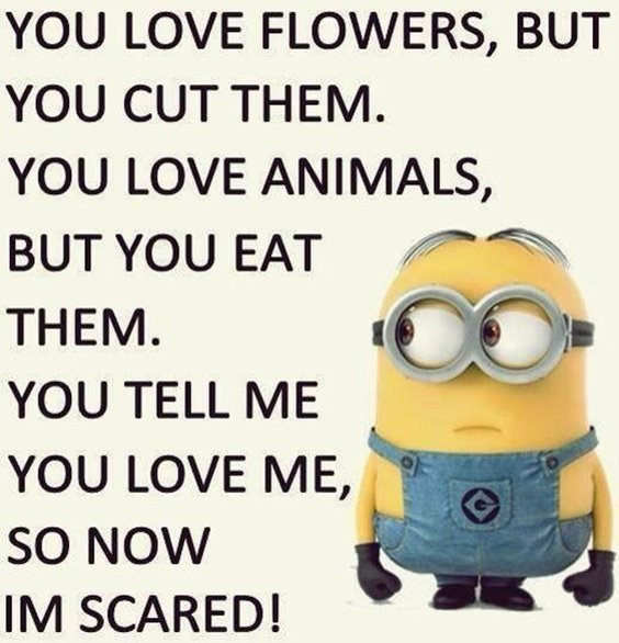 Top 87 Funny Minions Quotes And Funny Pictures 8