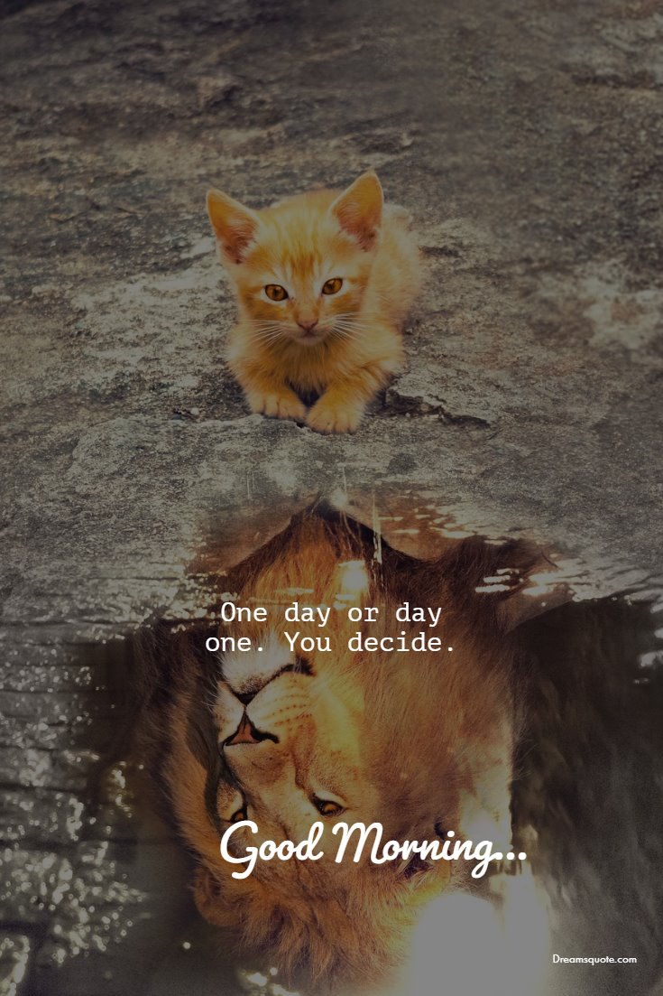56 Good Morning Quotes and Wishes with Beautiful Images 18