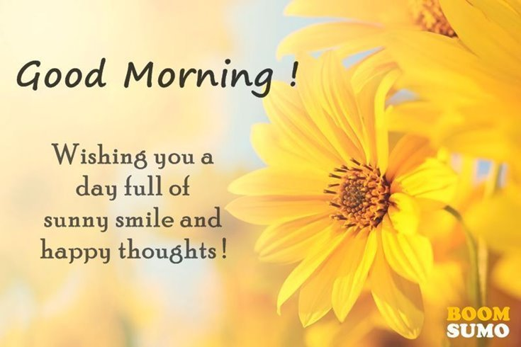 56 Good Morning Quotes and Wishes with Beautiful Images 23