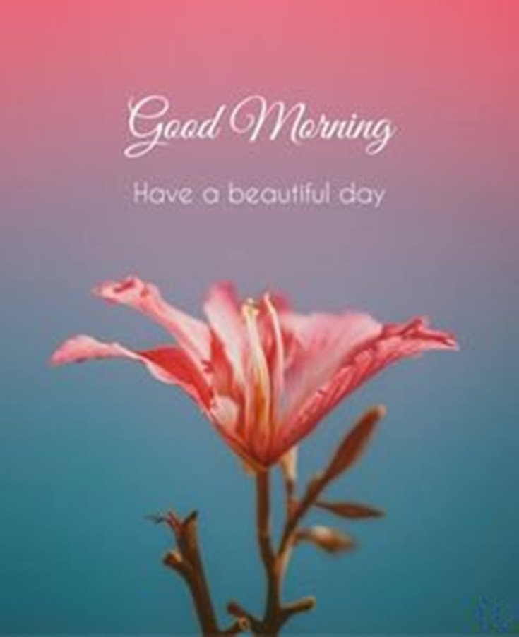 56 Good Morning Quotes and Wishes with Beautiful Images 39