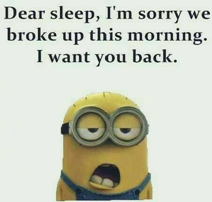 Best 45 Very Funny Minions Quotes of the Week 14