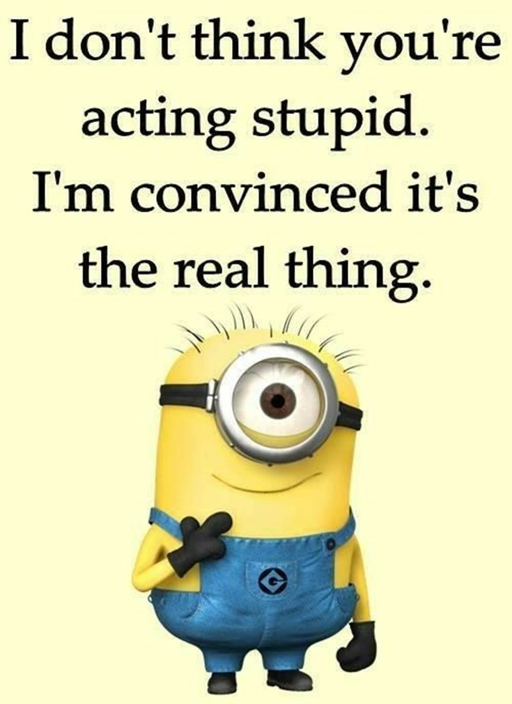 Best 45 Very Funny Minions Quotes of the Week 17
