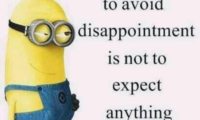 Best 45 Very Funny Minions Quotes of the Week 19