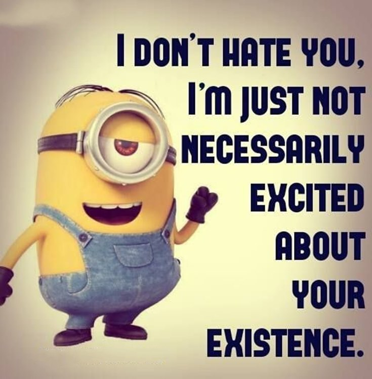 Best 45 Very Funny Minions Quotes of the Week 32