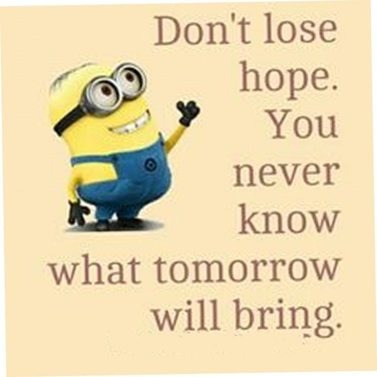 Best 45 Very Funny Minions Quotes of the Week 35