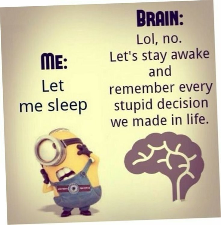 Best 45 Very Funny Minions Quotes of the Week 38