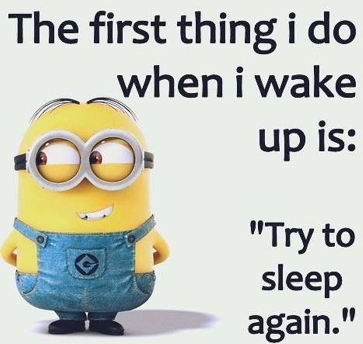 Best 45 Very Funny Minions Quotes of the Week 39
