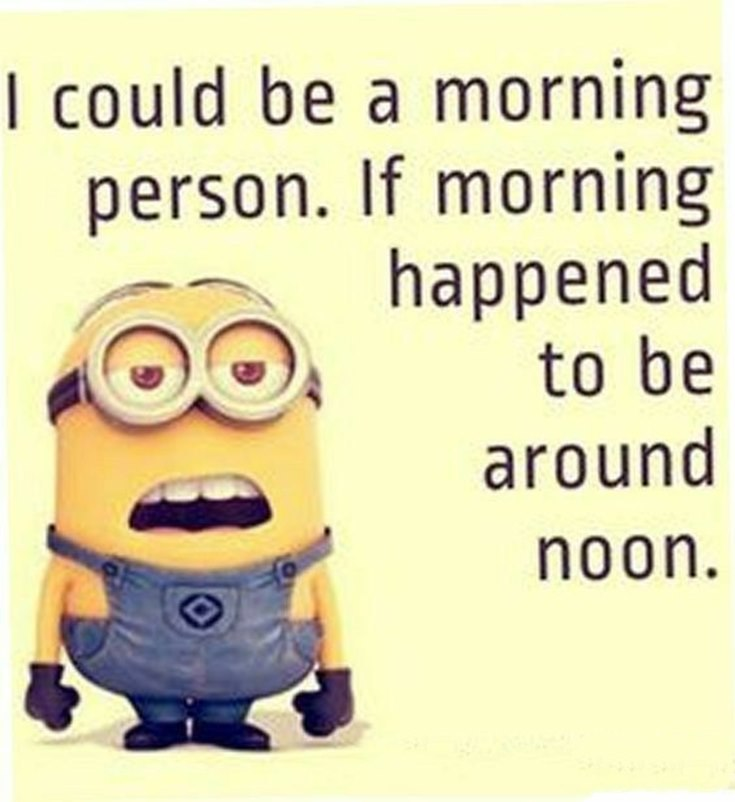 Best 45 Very Funny Minions Quotes of the Week 9