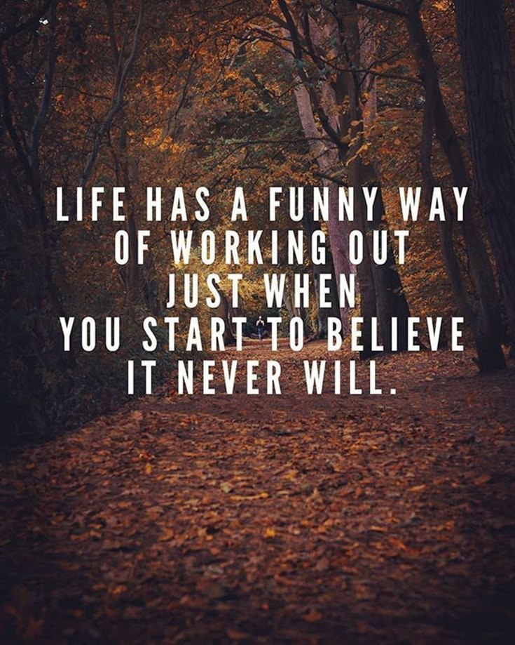 59 Funny Inspirational Quotes Life You're Going To Love ...