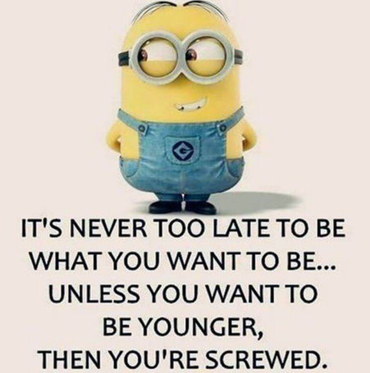 38 Funny Quotes Minions And Minions Quotes Images 10