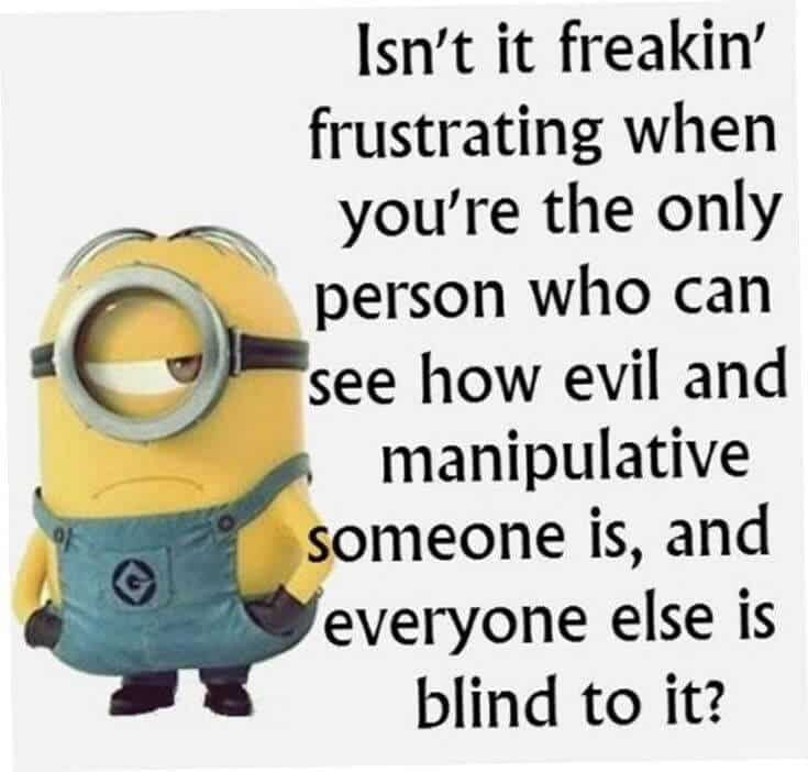 38 Funny Quotes Minions And Minions Quotes Images 20