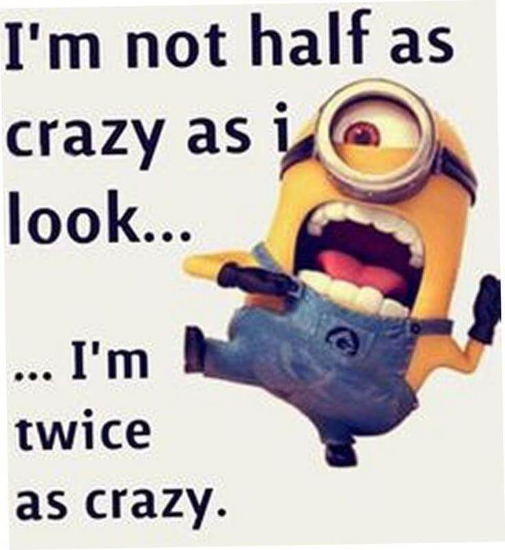 38 Funny Quotes Minions And Minions Quotes Images 29