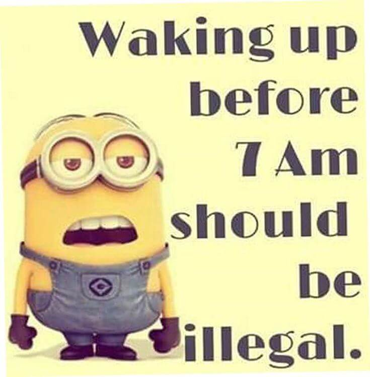 38 Funny Quotes Minions And Minions Quotes Images 35