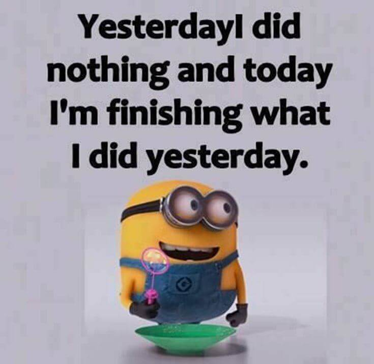 38 Funny Quotes Minions And Minions Quotes Images 8