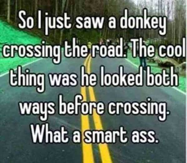 75 funny quotes and sayings - short quotes that are funny words | funny happy sayings, you are amazing funny, funny jokes and sayings