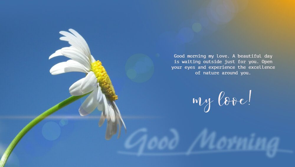 97+ Good Morning Love Messages For Her - Best Romantic ...