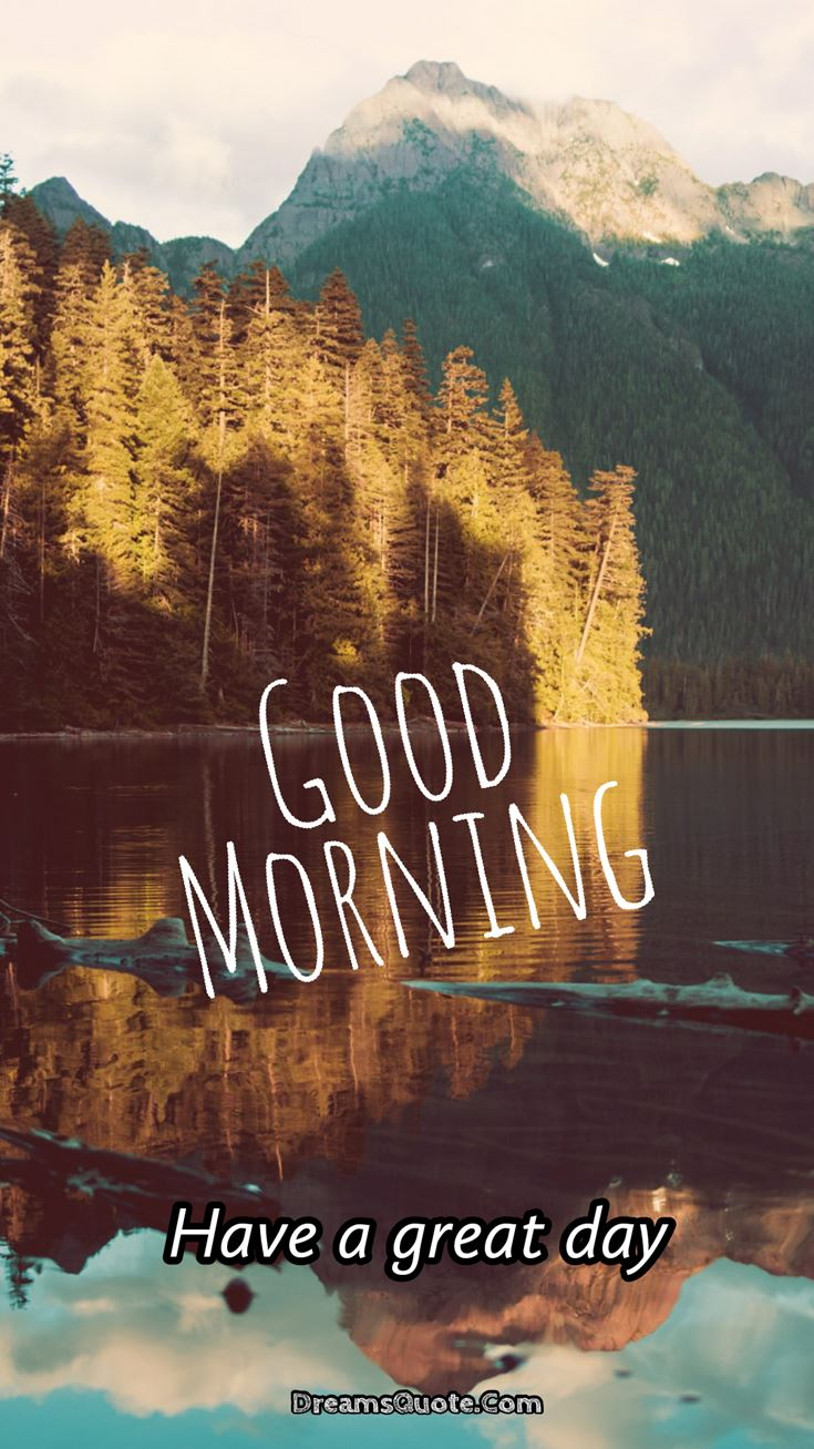 Best Good Morning Pictures #forest