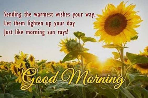 Good morning quotes with images and good morning messages 19