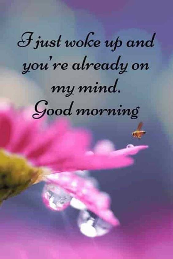 Good morning quotes with images and good morning messages 28