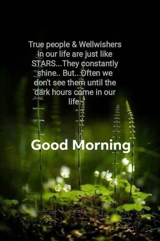 Good morning quotes with images and good morning messages 4