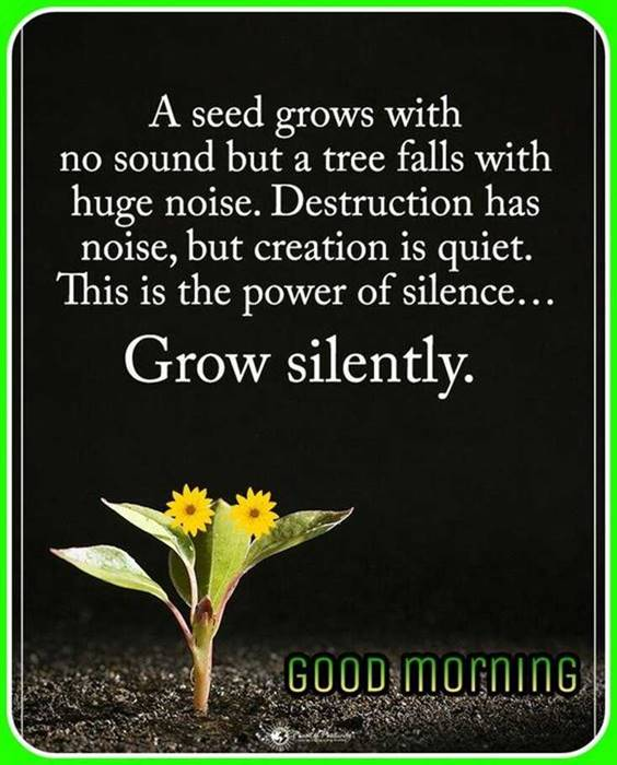 Good morning quotes with images and good morning messages 5