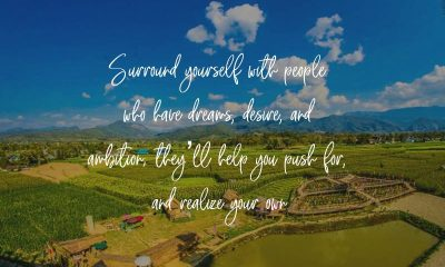 Inspirational Quotes about Teamwork and Surround Yourself Associations