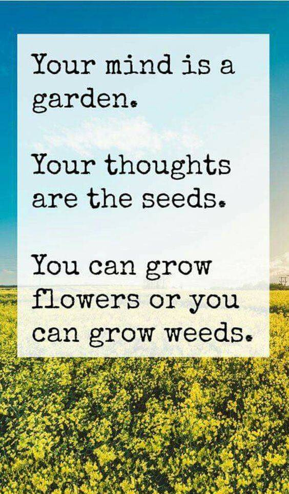 inspirational quotes with images 15
