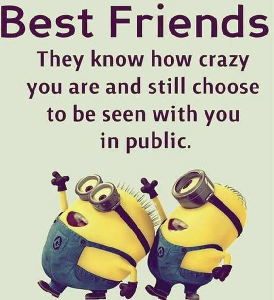 40 Crazy Funny Friendship Quotes for Best Friends 2