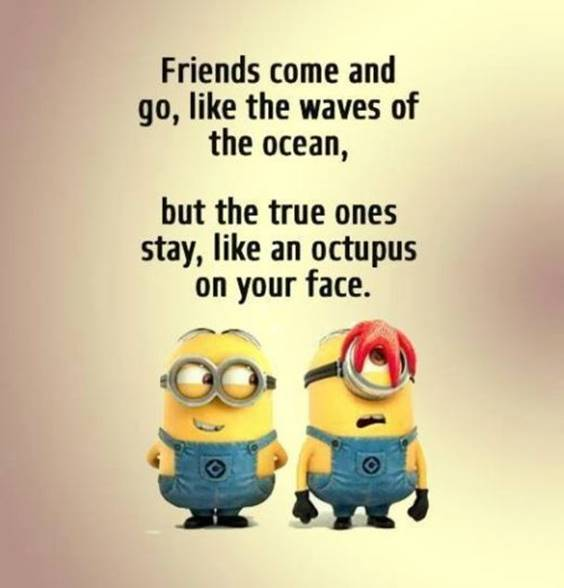 40 Crazy Funny short bff sayings girl friends quotes funny friends quotes and sayings