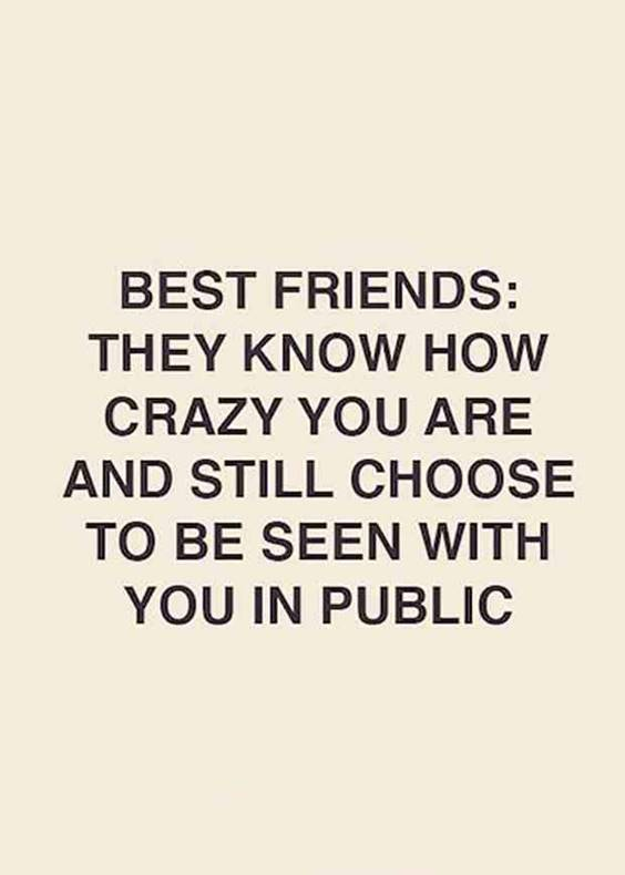 40 Crazy Funny Friendship Quotes for Best Friends 6