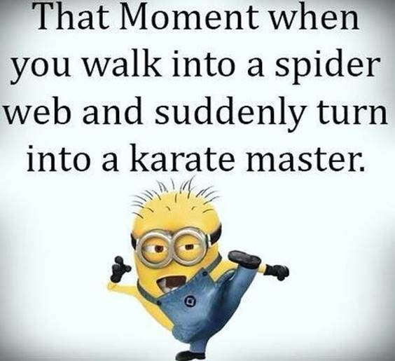 42 Funny Jokes Minions Quotes With minion images quotes