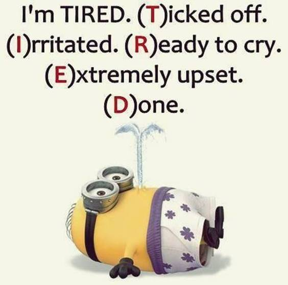 42 Funny Jokes Minions Quotes With Minions 36
