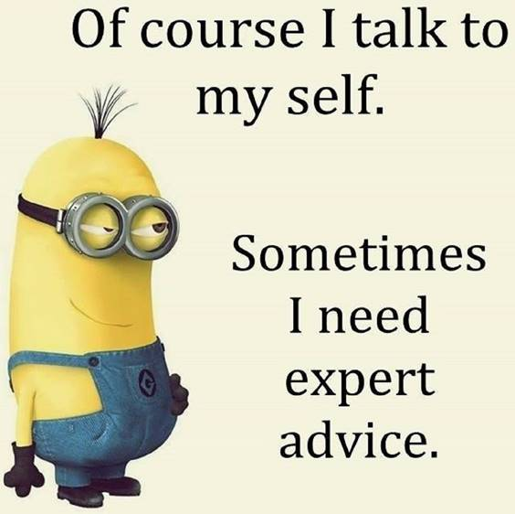 42 Funny Jokes Minions Quotes With minions positive quotes