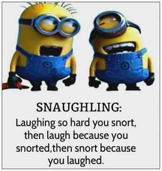 45 Best short witty sayings funny lines to say funny catchy phrases